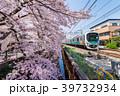 武蔵関 桜 桜並木の写真 39732934