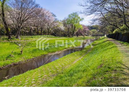 東京武蔵野 野川公園の風景 39733708