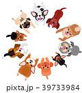 寝ながら見上げる小型犬たちのサークル 39733984