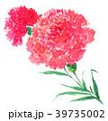carnation18414pix7 39735002