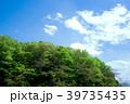 春 葉 雲の写真 39735435