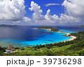 海 座間味島 夏の写真 39736298