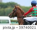 競馬 競走馬 サラブレッドの写真 39740021