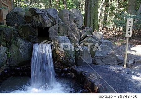 椿大神社のかなえ滝 39743750