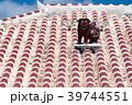 シーサー 屋根 沖縄の写真 39744551