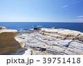 千畳敷 南紀白浜 海の写真 39751418