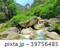 昇仙峡 覚円峰 新緑の写真 39756485
