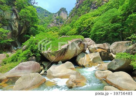 新緑の覚円峰(昇仙峡) 39756485