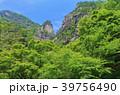 昇仙峡 覚円峰 新緑の写真 39756490