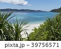 座間味島 古座間味ビーチ 海の写真 39756571