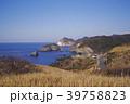 静岡県 南伊豆 あいあい岬 冬2 39758823