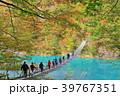 寸又峡 夢の吊り橋 紅葉の写真 39767351