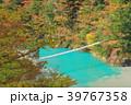 寸又峡 夢の吊り橋 紅葉の写真 39767358