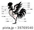 鶏肉 チキン 部位のイラスト 39769540