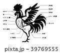 鶏肉 チキン 部位のイラスト 39769555