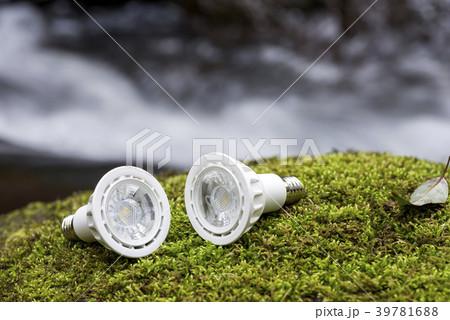 沢をバックに苔の上のLED電球 39781688