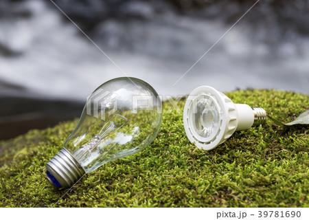 沢をバックに苔の上のLEDランプと白熱電球 39781690