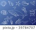手書き風 海の生き物 線画セット 39784707