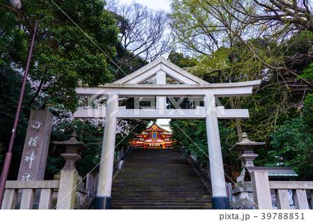 日枝神社 正面鳥居 39788851