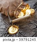 ビットコイン 袋 ザックのイラスト 39791245