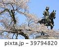 伊達政宗 桜 春の写真 39794820