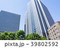 霞が関 タワービル 高層ビルの写真 39802592