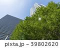 霞が関 タワービル 高層ビルの写真 39802620