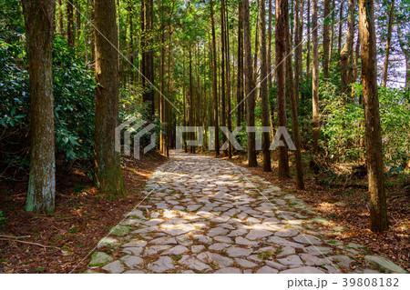 (静岡県)山中城址付近の箱根旧街道石畳 39808182