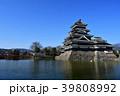 早春の松本城 39808992