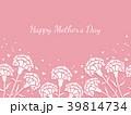 母の日 カーネーション 花のイラスト 39814734