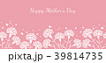母の日 カーネーション 花のイラスト 39814735