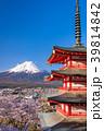 富士山 新倉山浅間公園 桜の写真 39814842