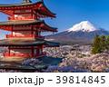 富士山 新倉山浅間公園 桜の写真 39814845