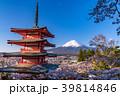 富士山 新倉山浅間公園 桜の写真 39814846