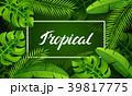 トロピカル 熱帯 ヤシのイラスト 39817775
