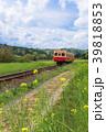 小湊鉄道 電車 菜の花の写真 39818853