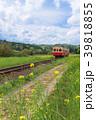 小湊鉄道 電車 菜の花の写真 39818855