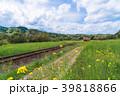 小湊鉄道 電車 菜の花の写真 39818866