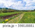 小湊鉄道 電車 菜の花の写真 39818881