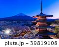 富士山 新倉山浅間公園 桜の写真 39819108