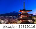 富士山 新倉山浅間公園 桜の写真 39819116