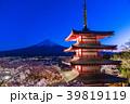 富士山 新倉山浅間公園 桜の写真 39819119