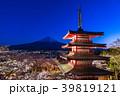 富士山 新倉山浅間公園 桜の写真 39819121
