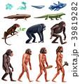 Darwin Evolution Icon Set 39819282