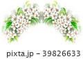 りんご 花 バラ科のイラスト 39826633