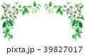 りんご 花 バラ科のイラスト 39827017