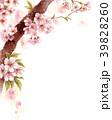 水彩で描いた桜の枝に咲く花 39828260