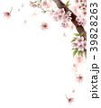 水彩で描いた桜の枝に咲く花 39828263