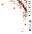 水彩で描いた桜の枝に咲く花 39828265