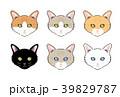 猫 哺乳類 動物のイラスト 39829787